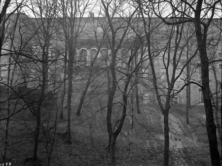 Zadrzewiona fosa u stóp północnego skrzydła zamku. (MNS/A.Foto/4990)